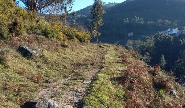 Equipa de sapadores florestais do Vale do Homem procede à limpeza da rede de trilhos pedestres